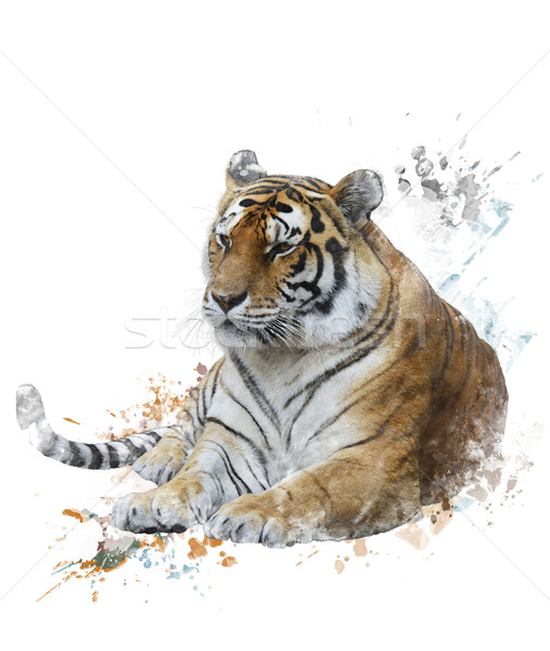 Stock photo: Watercolor Image Of Tiger