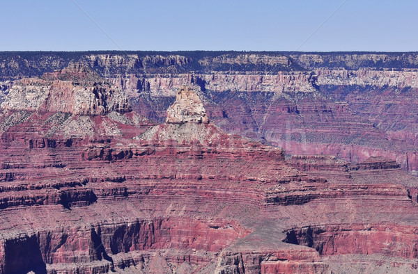Grand Canyon parque EUA pôr do sol viajar rochas Foto stock © saddako2