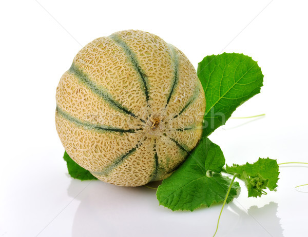 Melone fresche foglie bianco foglia Foto d'archivio © saddako2
