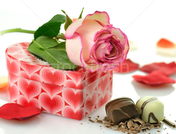 pink rose and gift box Stock photo © saddako2