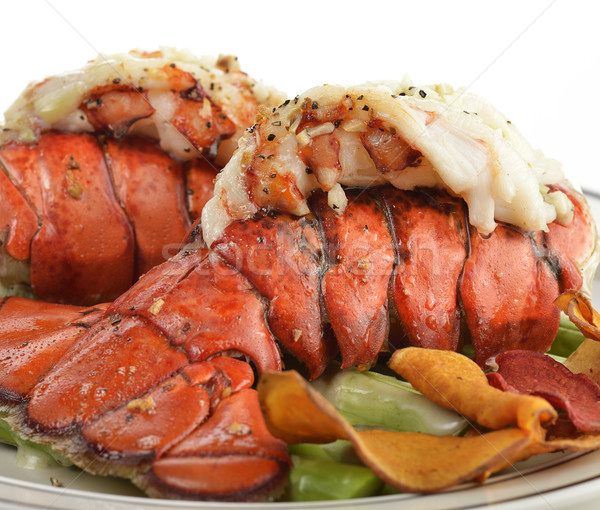 Grelhado lagosta cauda espargos comida Foto stock © saddako2