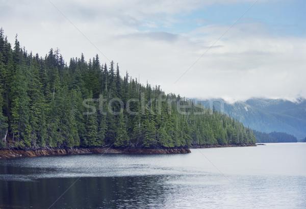 Alaska scénique paysage ciel arbre nuages Photo stock © saddako2