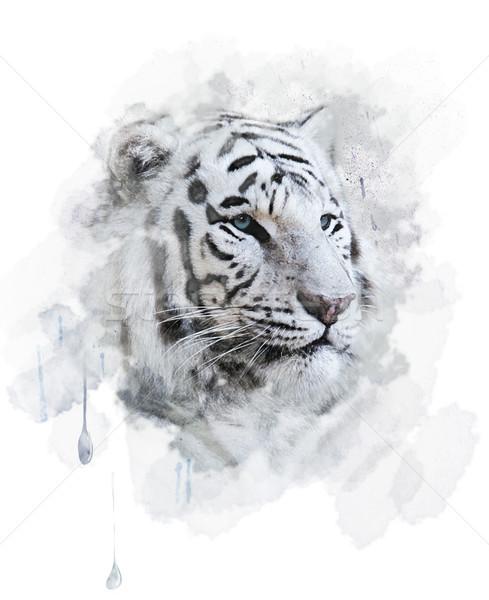 Beyaz kaplan portre dijital boyama kedi Stok fotoğraf © saddako2