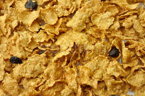 bran and raisin cereal background  Stock photo © saddako2