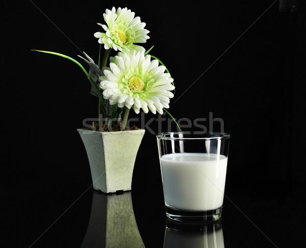 milk Stock photo © saddako2