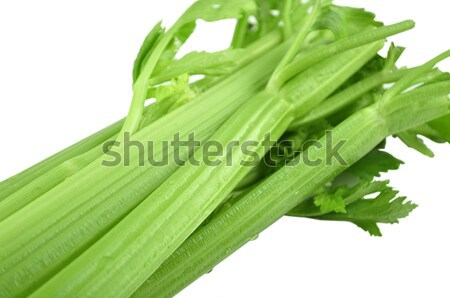Sedano fresche bianco alimentare vegetali giardinaggio Foto d'archivio © saddako2