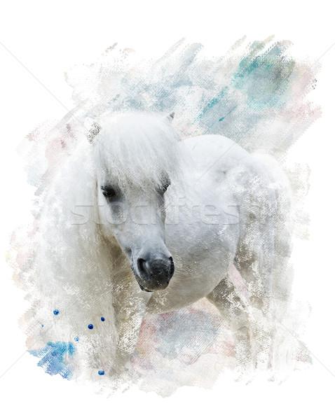 Watercolor Image Of  White Pony Stock photo © saddako2
