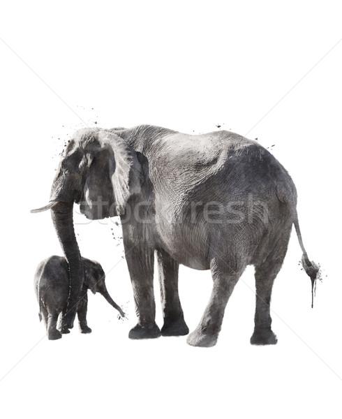 Stock photo: Watercolor Image Of  Elephants