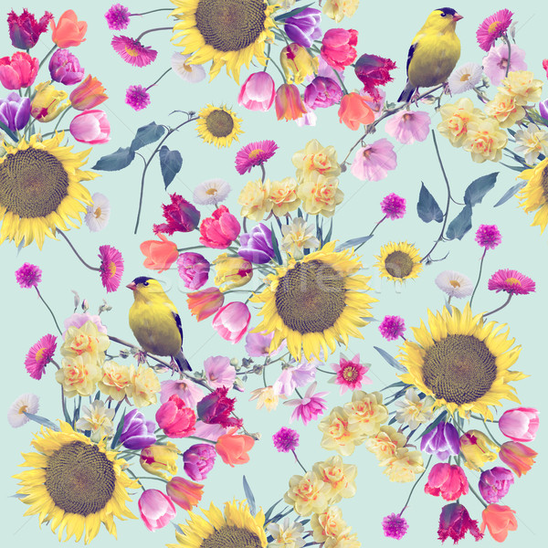Floral modèle oiseaux texture Photo stock © saddako2