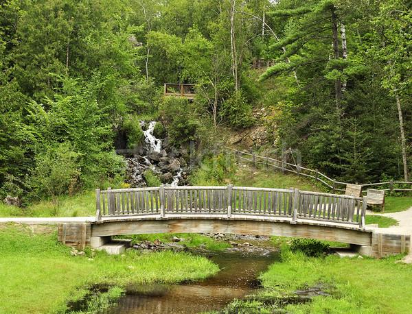 wooden bridge in the park  Stock photo © saddako2
