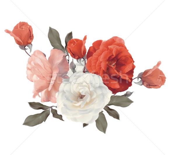 Stock fotó: Rózsák · vízfesték · fehér · izolált · rózsa · piros