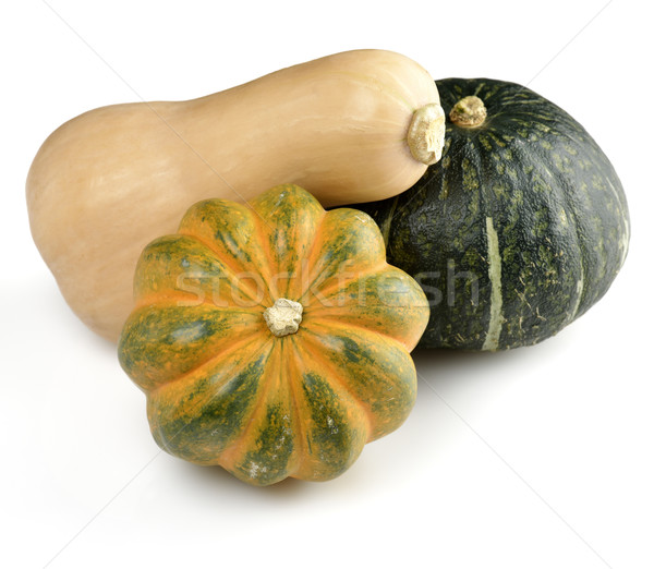 Squash  Stock photo © saddako2