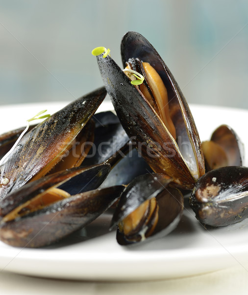 Mussels  Stock photo © saddako2