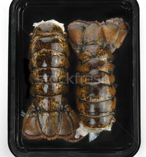 ıstakoz kabuk deniz ürünleri Stok fotoğraf © saddako2
