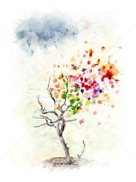 Sonbahar Ağaç Suluboya Dijital Boyama Renkli Stok