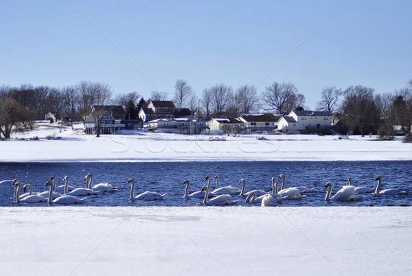 Muchos invierno lago agua ciudad hielo Foto stock © saddako2