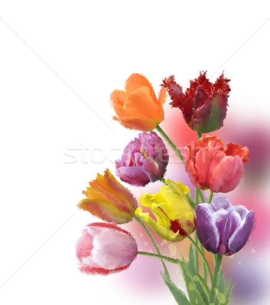 Lâle çiçekler Dijital Boyama çiçek Bahar Stok Fotoğraf