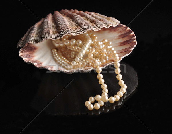 pearl into a shellfish  Stock photo © saddako2