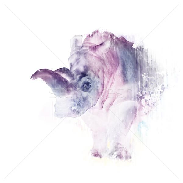 Aquarel neushoorn witte digitale schilderij wildlife Stockfoto © saddako2