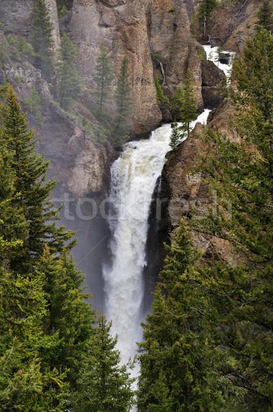 Tower Falls Waterfall  Stock photo © saddako2