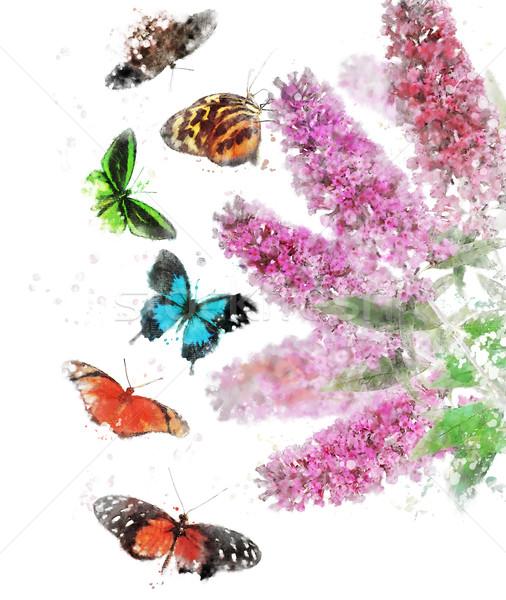 Watercolor Image Of Butterfly Bush Stock photo © saddako2