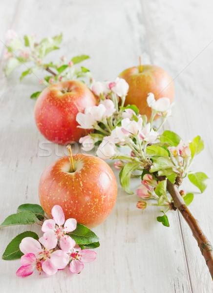 яблоки филиала зрелый сочный таблице Сток-фото © saharosa