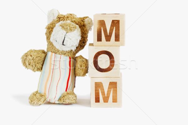 bear and wooden blocks Stock photo © saharosa