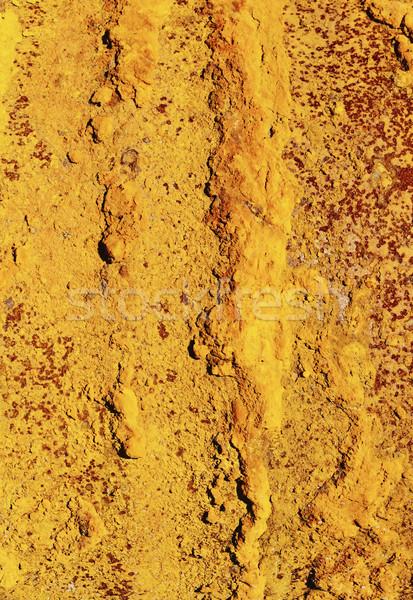 Güzel pas paslı parça demir bo Stok fotoğraf © saharosa
