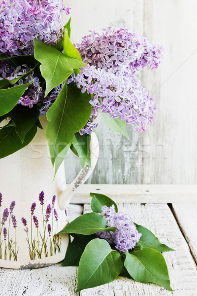 fresh bouquet of lilac Stock photo © saharosa