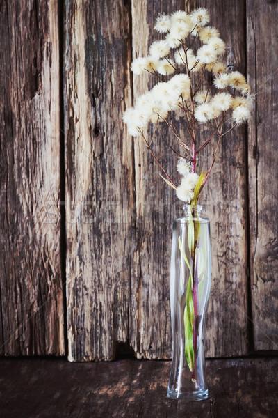 Secas flores silvestres vazio garrafa perfume Foto stock © saharosa