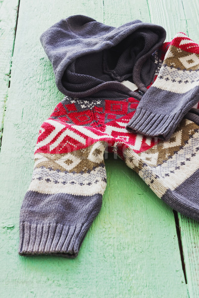 Gyapjú kapucnis pulóver dísz zöld fából készült Stock fotó © saharosa