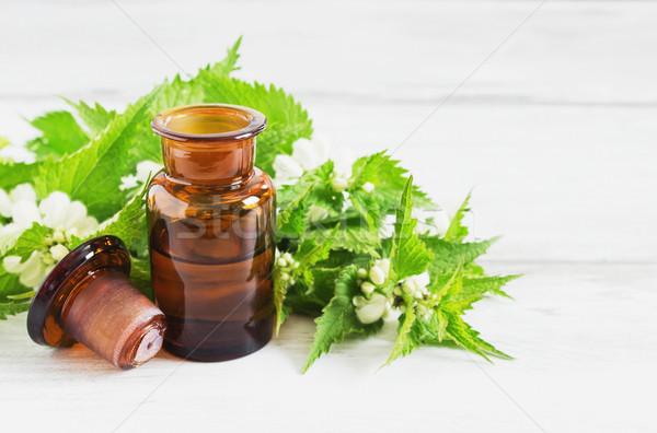 Lényeg olaj friss ágak virágzó egészség Stock fotó © saharosa