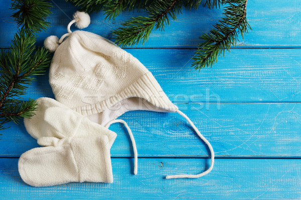 Winter kleding hoed wanten Blauw houten Stockfoto © saharosa