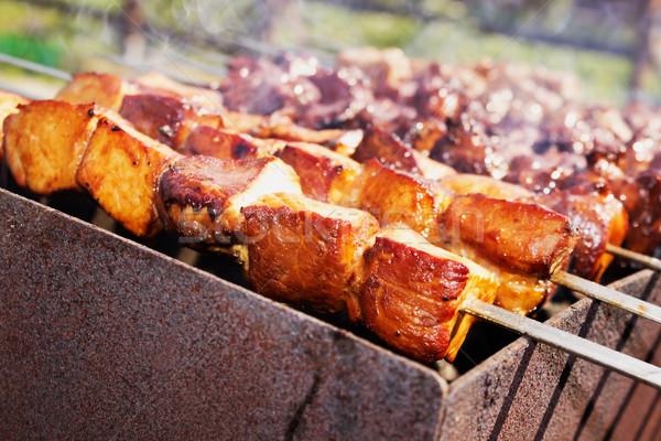 Brocheta metal aire libre picnic atención selectiva primer plano Foto stock © saharosa