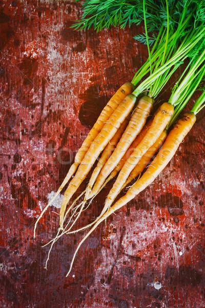 Vers wortelen oude houten boomgaard tuin Stockfoto © saharosa