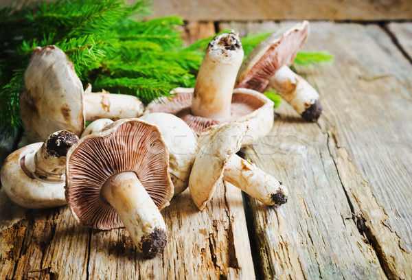 Vers champignons oude houten bos geschenken Stockfoto © saharosa
