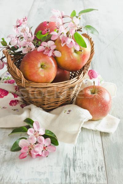Olgun elma sepet şube sağlıklı Stok fotoğraf © saharosa