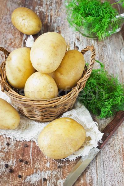 картофель фенхель свежие таблице продовольствие Сток-фото © saharosa