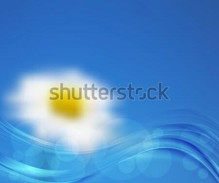 Jasne charakter wektora gradient streszczenie Zdjęcia stock © saicle