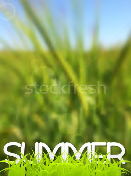 Abstract green blurred summer background Stock photo © saicle