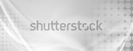Luce grigio abstract ondulato grunge banner Foto d'archivio © saicle