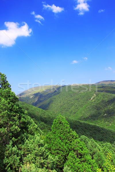 Mountains against the sky Stock photo © saicle