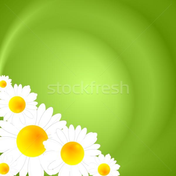 Zöld nyár természet textúra absztrakt fény Stock fotó © saicle