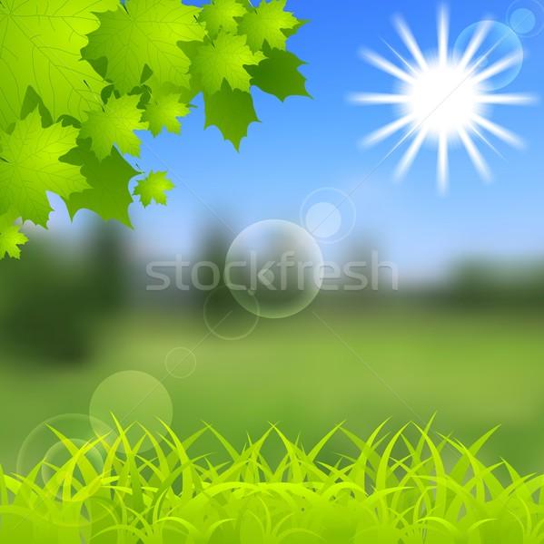 Wiosną lata gradient wibrujący błyszczący Zdjęcia stock © saicle