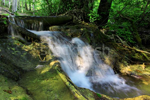 Kaskada mały wodospad głęboko lasu wody Zdjęcia stock © saicle