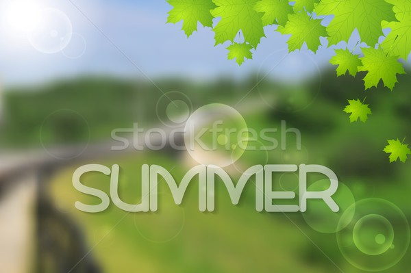 Bright green summer landscape vector design Stock photo © saicle
