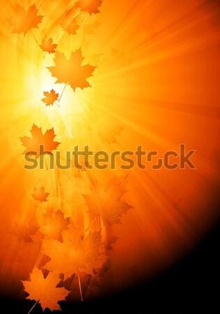 Stok fotoğraf: Parlak · sonbahar · dalgalı · arka · plan · renkli · soyut
