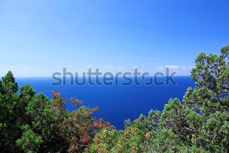Sea Stock photo © saicle