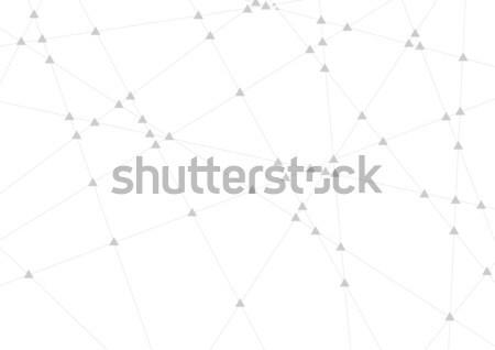 Abstract grijs communicatie lijnen vector meetkundig Stockfoto © saicle