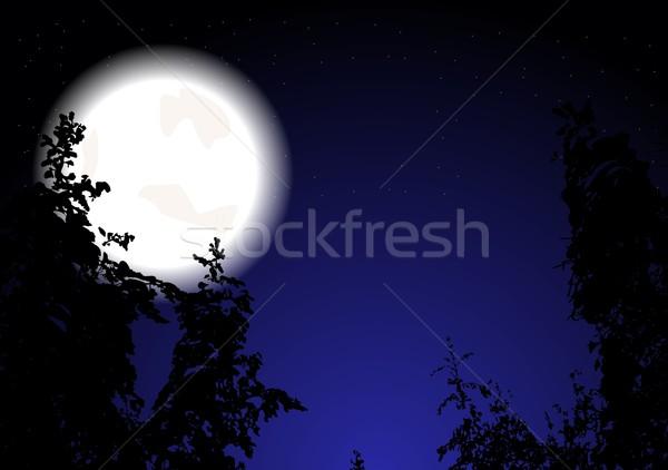 Night wood (eps 10) Stock photo © saicle